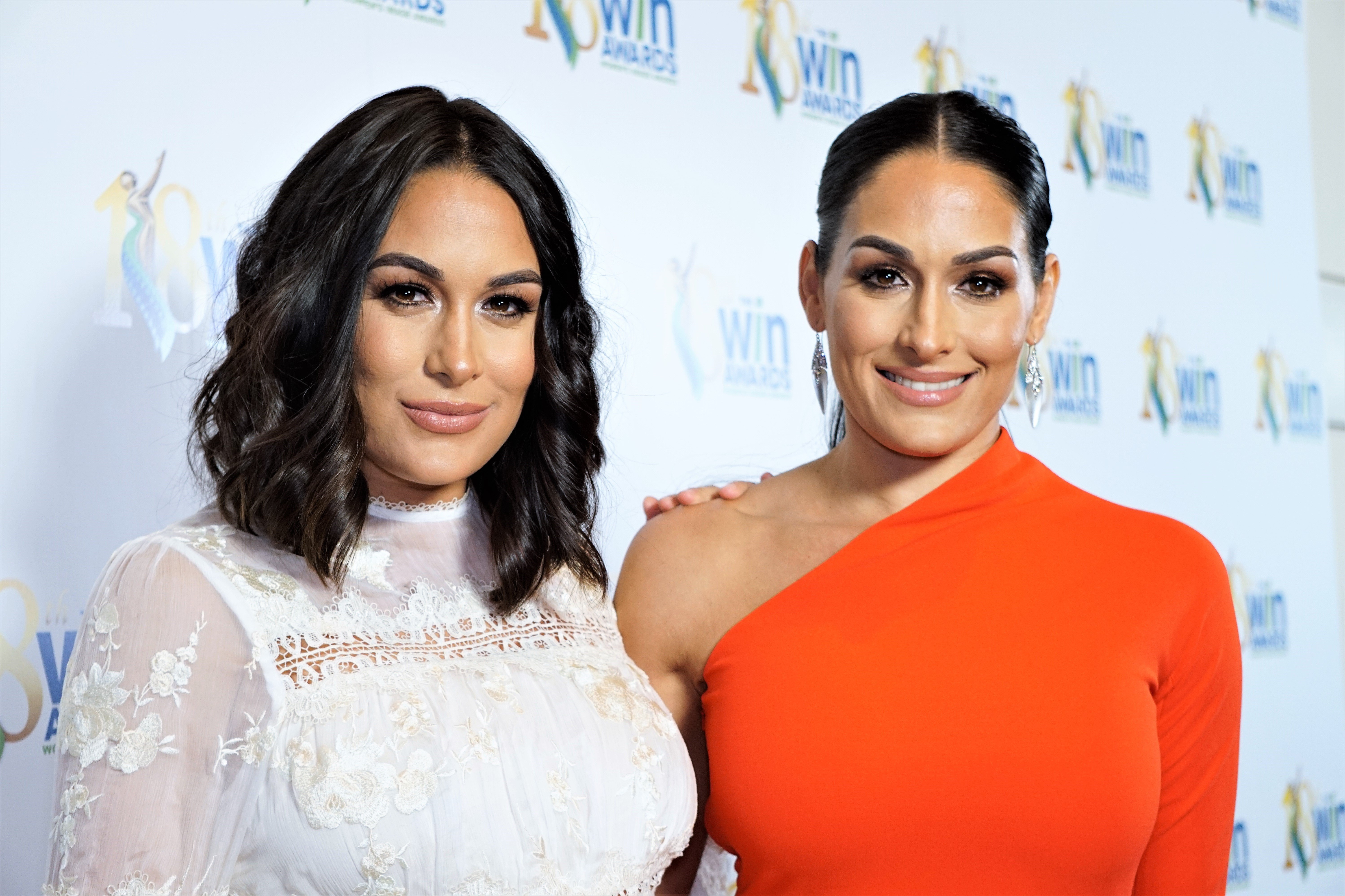 nikki bella brie bella the bella twins